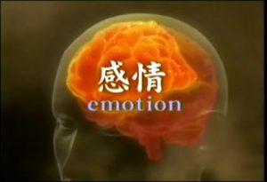 感情はどこからつくられる