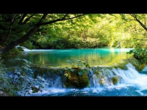 川のせせらぎや自然の音