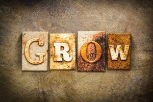 成長という言葉の意味づけ